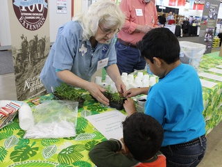 2017 Texas Home Garden Show Marie Sells Dallas