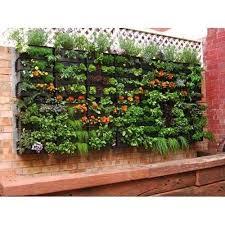 verttical garden
